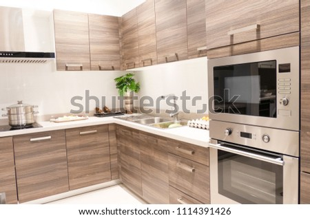 Gourmet new kitchen features . Modern kitchen interior . #1114391426
