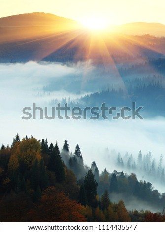 beautiful foggy autumn sunrise in mountains, picturesque scenic scenery, mist on valley in first rays sun, Europe scene, Ukraine, wallpaper vertical landscape background #1114435547