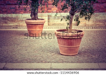 big ceramic flower pot on the street on the stone sidewalk in retro style #1114436906