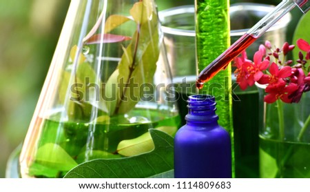 Scientist with natural drug research, Natural organic botany and scientific glassware, Alternative green herb medicine, Natural skin care beauty products, Research and development concept. #1114809683