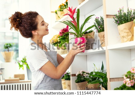Floristic industry. Joyful happy woman holding a houseplant while working in the flower shop #1115447774