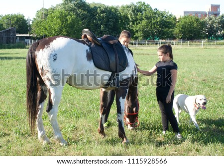 two sisters, a colorful horse that grazes and a dog #1115928566