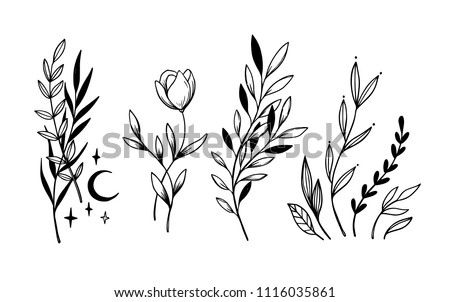 Hand sketched vector vintage elements ( laurels, leaves, flowers, swirls, moon). Wild and free. Perfect for invitations, greeting cards, quotes, blogs, posters.