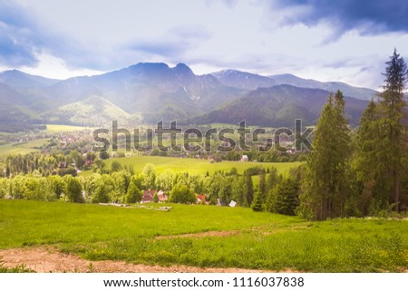 A view of the Tatra mountain range. In the foreground, green grass and trees #1116037838