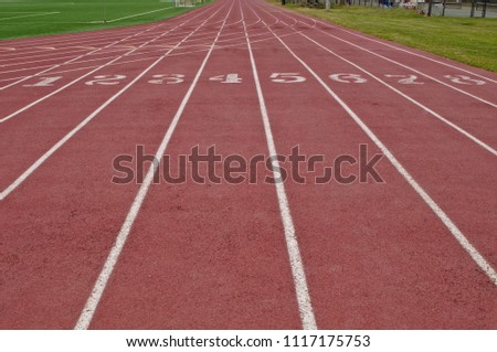Running lanes on a red track with white numbers and lines with green grass on both sides #1117175753
