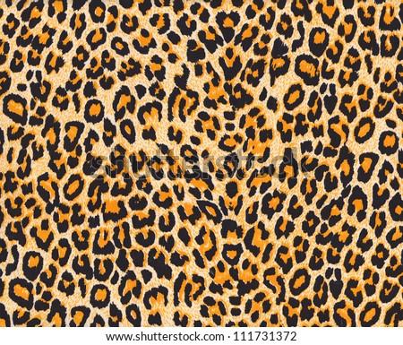 Texture of leopard skin background