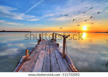 flying by the lake Royalty-Free Stock Photo #111732092