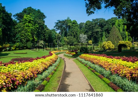 Royal Botanic Gardens, Peradeniya are about 5.5 km to the west of the city of Kandy in the Central Province of Sri Lanka. It attracts 2 million visitors annually. It is near the Mahaweli River. #1117641860