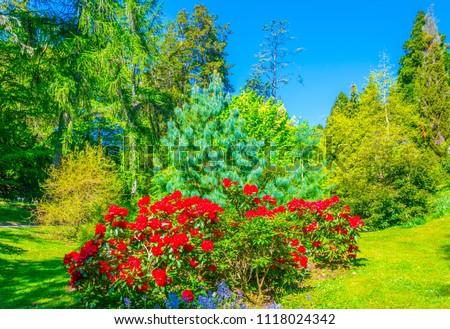 Gardens of the Powerscourt estate in Ireland #1118024342