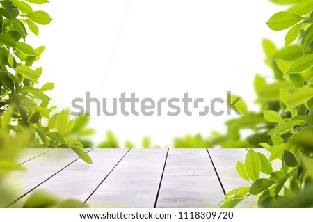 wooden table top with spring green leafs as frame and free space for text