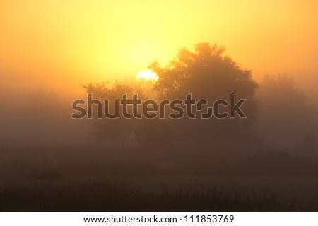 A beautiful foggy sunrise in early autumn #111853769