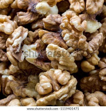 Raw fresh organic walnut nuts. #1119401471