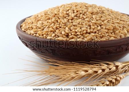Wheat grains ,Grain of the wheat , whole wheat grains #1119528794