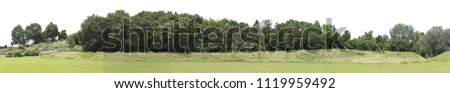 Very high definition Treeline isolated on a white background #1119959492