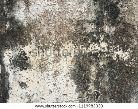 Old cement floor #1119983330