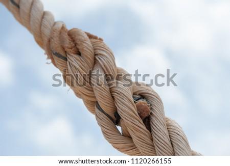 Rope Mesh in Adventure Field #1120266155