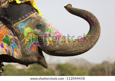 Decorated elephant at the annual elephant festival in Jaipur, India. Royalty-Free Stock Photo #112044458