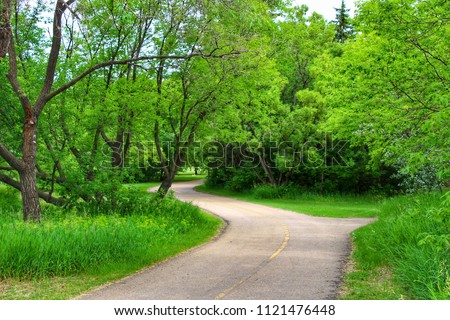 Luscious Green Trees  #1121476448