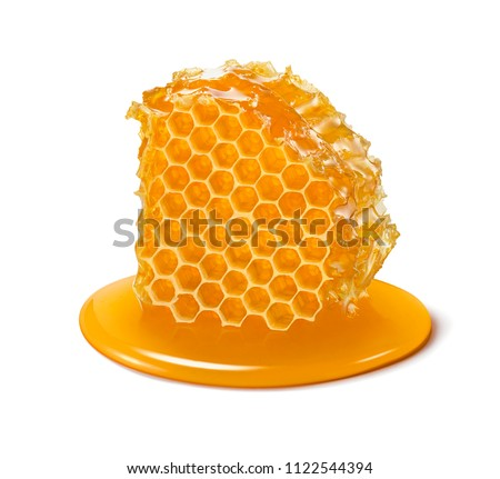 Honeycomb. Honey cell slice isolated on white background. Package design element with clipping path Royalty-Free Stock Photo #1122544394