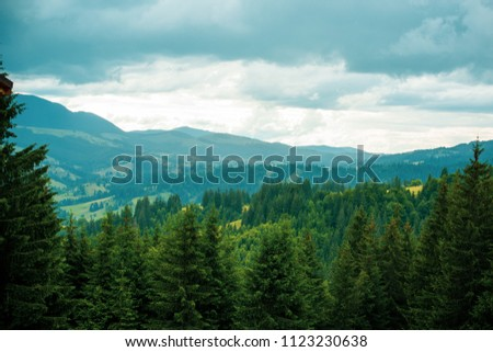 Nice mountains view at sunny day with under blue sky with sunlight at warm time. Carpathian mountains summer sunset landscape with sun and alpine pines #1123230638