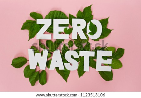 zero waste paper text witj green leaves on pink background  Royalty-Free Stock Photo #1123513106