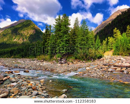 A small group of larches on the banks of a mountain river. Shumak . Eastern Sayan. Republic of Buryatia #112358183
