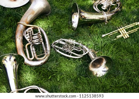 Several ancient musical wind instruments lie on the green grass in the park. Cornet, tenor, baritone, tuba. Royalty-Free Stock Photo #1125138593