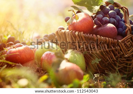 Organic fruit in basket in summer grass. Fresh grapes, pears and apples  in nature Royalty-Free Stock Photo #112543043