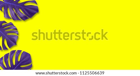Creative colorful purple tropical leaf monstera in vibrant bold color on yellow background. Concept art. Minimal surreal. Flat lay. #1125506639