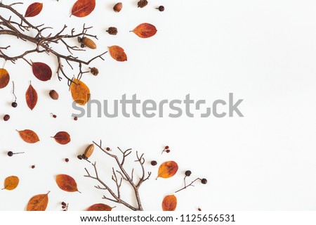 Autumn composition. Frame made of autumn dried leaves on white background. Flat lay, top view, copy space #1125656531