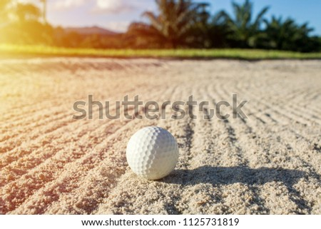 selective focus white golf ball on the sand bunker with green field #1125731819