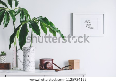 Interior of white home space with mock up poster frame, tropical leaf  and vintage camera. Scandinavian white cupboard concept. #1125924185