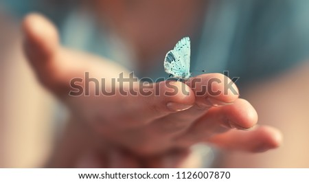 Butterfly sits on a woman hand. Blue, fragile butterfly wings on woman fingers create harmony of nature, beauty magic close-up. Macro. #1126007870