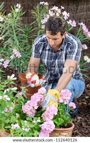 Man pruning flowers and plants in home garden. Caucasian male gardener working outdoor. #112640126