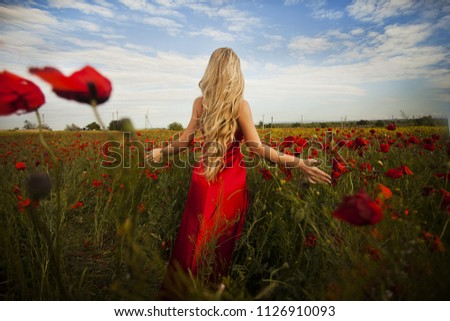 Sexy blond girl in elegant dress posing in summer field of red poppies #1126910093