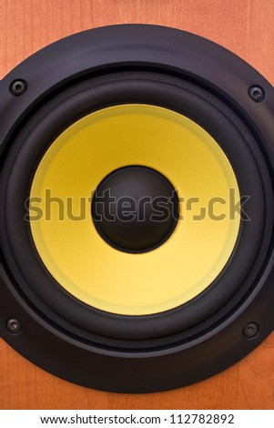 Yellow speaker diaphragm cone