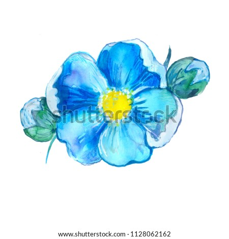 wedding blue flower and pearl #1128062162