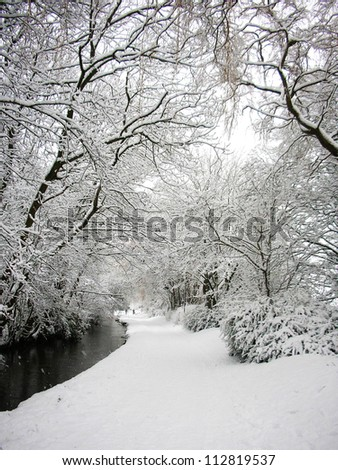 snow covered riverbank with trees overhanging