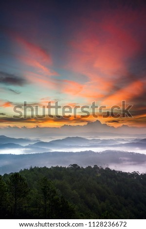 the best of landscape nature in the dawn or sunrise