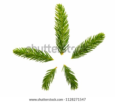 Christmas tree, young shoots on a white background, isolated. #1128271547
