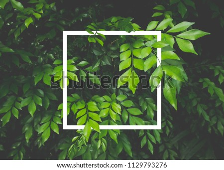 Creative layout made of leaves with white paper frame. Flat lay. Nature concept #1129793276
