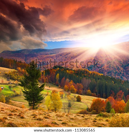 Colorful autumn sunset in the mountains #113085565
