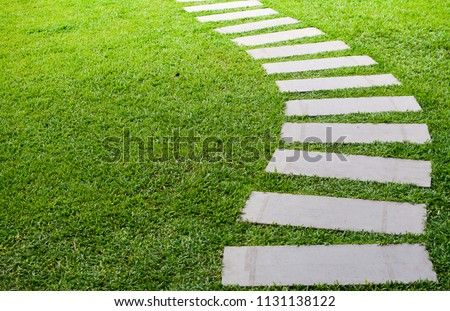 Pathway in the garden, forward stepping stones in the grass lawn. Using for the roadway to success, achievement, leadership, milestone, vision, and mission concept. #1131138122