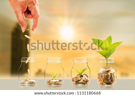 Investor hand hold and drop a gold coin in the bottle and plant growing with savings money on photo blur cityscape on sunlight background, Business investment and saving money concept. #1131180668