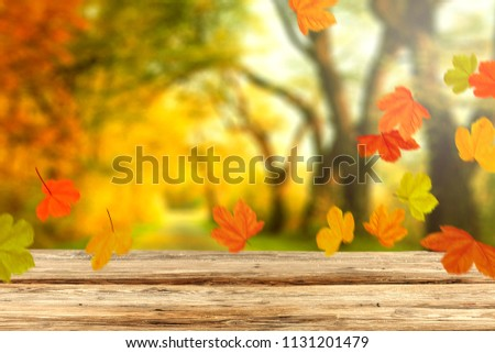 Table background and autumn time. Free space for your product.  #1131201479
