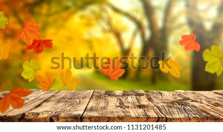 Table background and autumn time. Free space for your product.  #1131201485