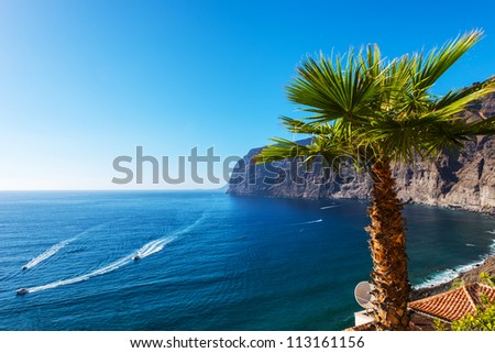 View of Los Gigantes cliffs. Tenerife, Canary Islands, Spain Royalty-Free Stock Photo #113161156