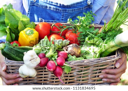 Portrait of a happy young farmer holding fresh vegetables in a basket. On a background of nature The concept of biological, bio products, bio ecology, grown by own hands, vegetarians, salads healthy  #1131834695