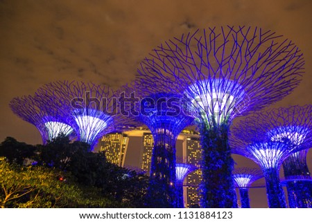 SINGAPORE - JUNE 23, 2018: The Supertree Grove at Gardens by the Bay in Singapore near Marina Bay Sands hotel at summer night #1131884123