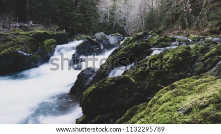 Landscapes from Washington State National Forests and National Parks. #1132295789